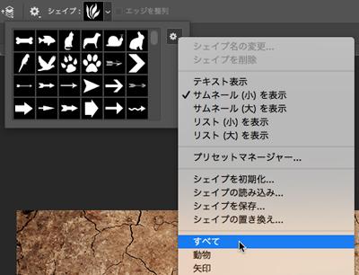 Icons and Menu (CC)