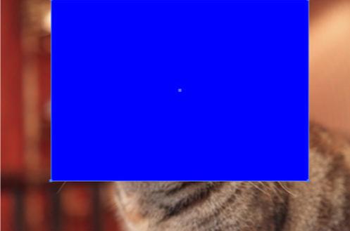 写真の上に四角形のオブジェクトが乗った画像