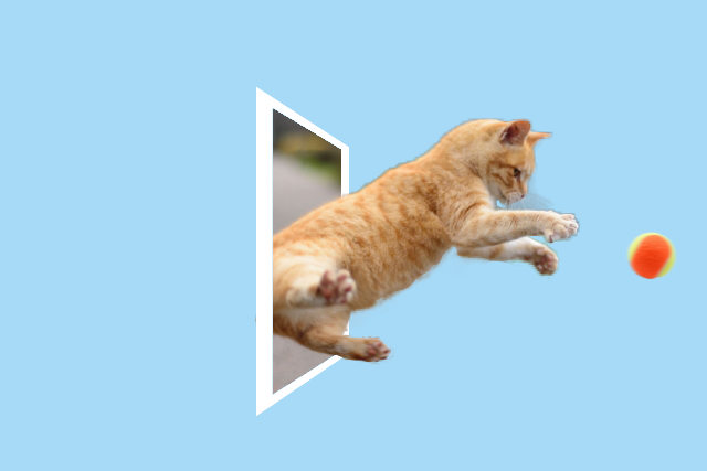 The jumping cat photo has been made more dynamic by this editing.