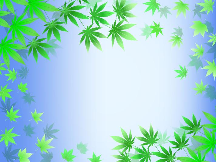 Illustration of maple leaf