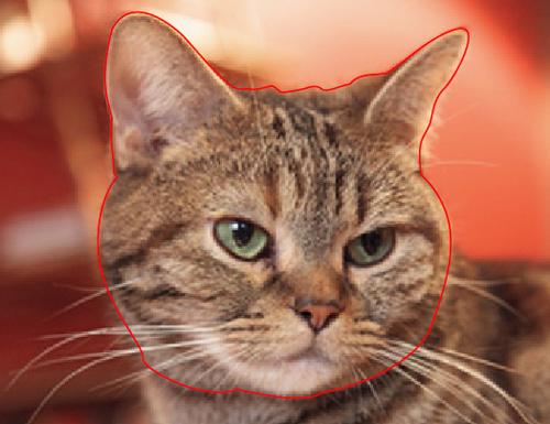 ペンツールで猫の顔を囲った画像