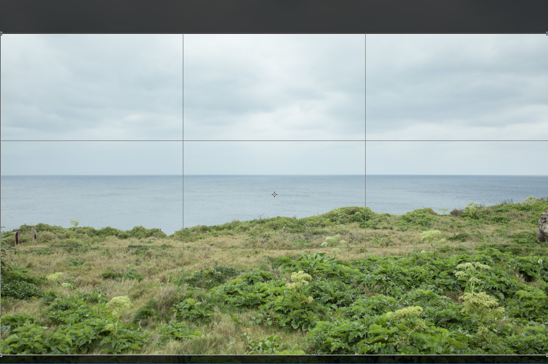 Display the image you want to crop and use the Crop tool to crop with the same value.
