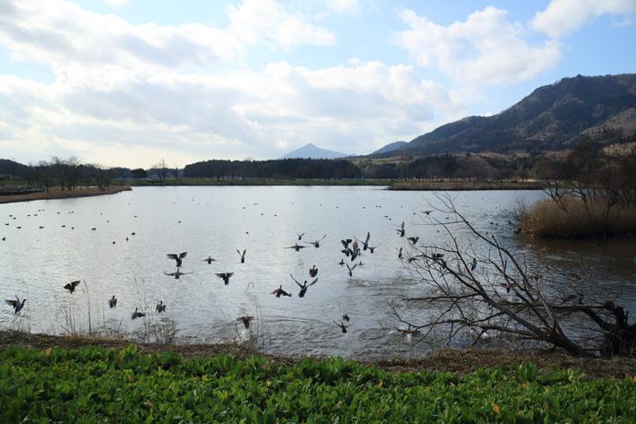 大きな池の手前の草原から、池の向こうに見える遠景の山までピントの合った写真