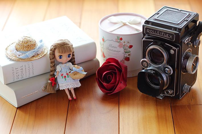 自然光ライティングで撮った人形と本とカメラ