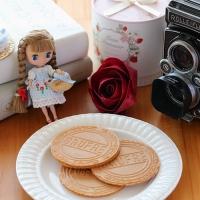 自然光で撮った人形と本とカメラとクッキー