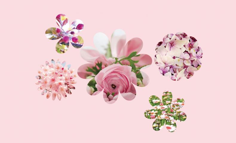 花の形に型抜きされた花の画像